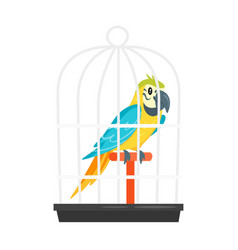 animal pet parrot in birdcage vector image