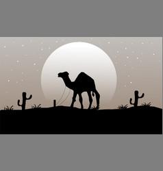 Camel sillhouette landscape vector