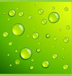 Fresh green dew dros vector