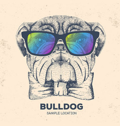 Hipster animal bulldog hand drawing muzzle vector