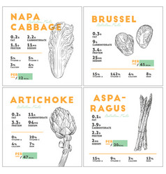 set of vegetables nutition facts hand draw sketch vector image