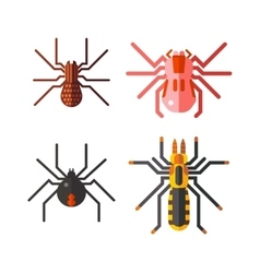Spiders isolated icons set vector image