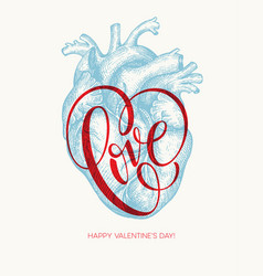Valentines day card with human heart and love vector