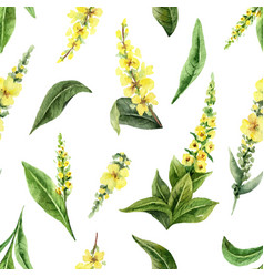 watercolor seamless pattern with mullein vector image