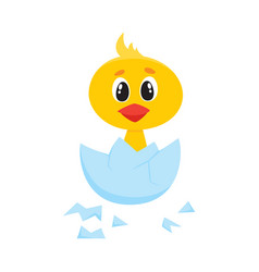cartoon cute chick character hatching vector image vector image