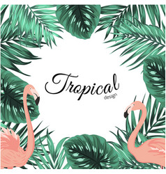 tropical design frame template leaves flamingos vector image