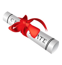 Certificate gift roll vector image vector image