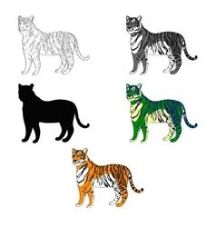 depicting a tiger line vector image