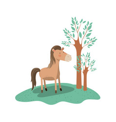 horse cartoon in forest next to the trees in vector image