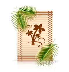 Bamboo mat tropic palm vector