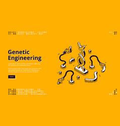 Banner genetic engineering vector