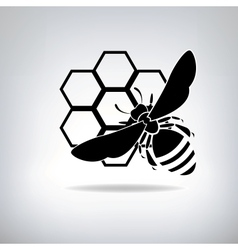 Black bees and honey vector