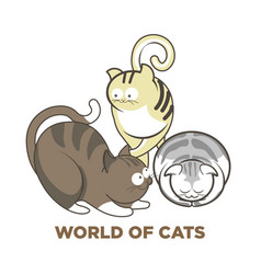 Cute cats or kitten pets playing or posing vector