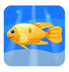 cute tropical fish orange color in sea ocean vector image