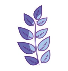Natural plant branch herb botany vector