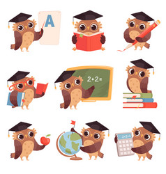 owl school teacher birds characters teaching vector image