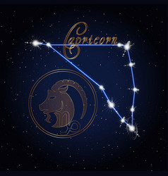 capricom astrology constellation of the zodiac vector image