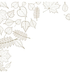 Autumn color leaves background template vector image vector image