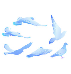 blue bird pigeon flies set of silhouettes vector image