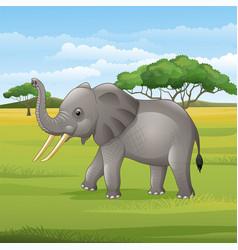 Cartoon elephant standing in savannah vector