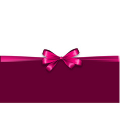 Holiday satin gift bow knot ribbon valentines day vector