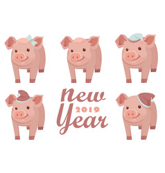 new year 2019 new year card design with five pigs vector image