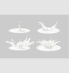 set realistic splashes milk isolated on a vector image