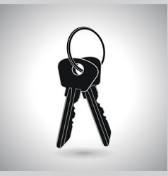 two keys on hanger black icon vector image