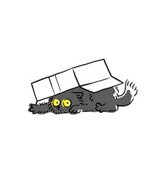 cute black cat under cardboard box sketch vector image