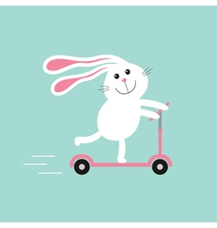 Cute cartoon rabbit hare riding a kick scooter vector image