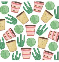 exotics cactus plants and ceramic pots pattern vector image