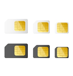 Mini micro nano sim cards in black and white color vector image
