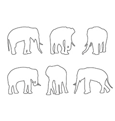 Elephant Set Path on the white background vector image