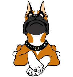cartoon boxer vector image