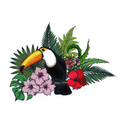 composition tropical flowers and exotic vector image