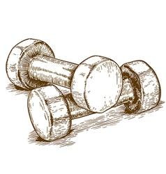 engraving dumbbell vector image