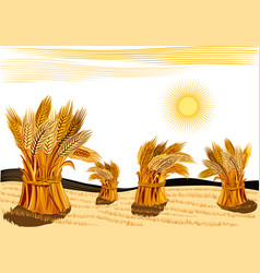 Rural landscape with sheaves of ripe wheat vector