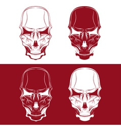 set of skulls design template vector image