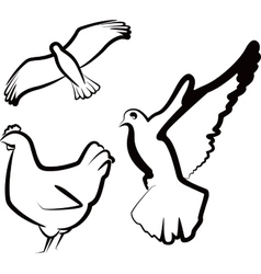 simple with birds vector image