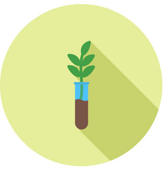 Successful growth vector