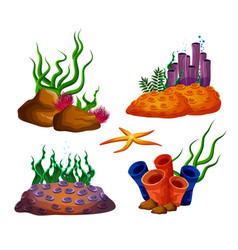 Underwater ocean reefs or aquarium corals vector