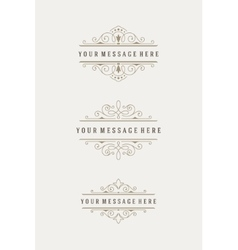 Vintage Ornaments Decorations Design vector image