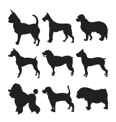 Collection of dogs silhouette vector