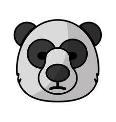 Bear icon image vector