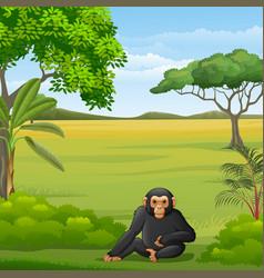Cartoon chimpanzee in savannah vector