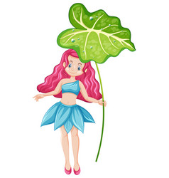 Cute fairy holding a leaf cartoon character on vector