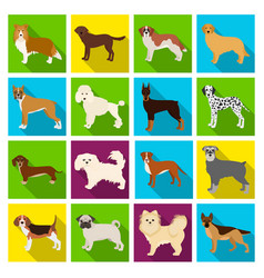 Dog pooch breed and other web icon in flat vector