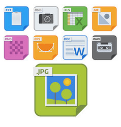 File types icons and formats labels vector