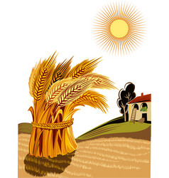Rural landscape with sheaf of ripe wheat vector