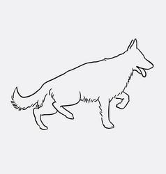 german shepherd pet dog doodle style vector image
